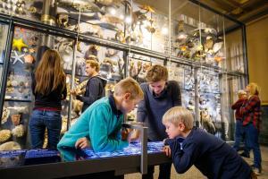 Naturkundemuseum_biowand_thomas_rosenthal_491_klein